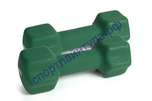 Гантель Sportsteel 4 кг