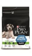 Pro Plan LARGE PUPPY ATHLETIC Корм для щенков крупных пород атлетического телосложения с курицей и рисом (12 кг)