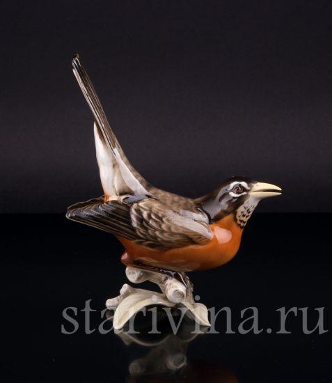 Антикварная старинная Фарфоровая статуэтка птицы Дрозд рябинник производства Hutschenreuther, Германия