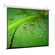 Экран с электроприводом ViewScreen Breston 305x305 см MW (16:9)