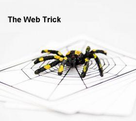 "Карточный набор ""Паук"" (The Web Trick)"