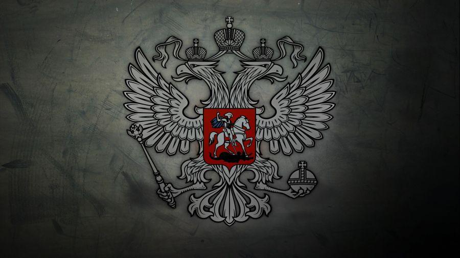 ОБЛОЖКА ДЛЯ ИНН ГЕРБ НА СЕРОМ ФОНЕ 007.015