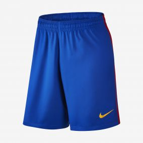 ШОРТЫ ИГРОВЫЕ NIKE FCB HA3G STADIUM SHORT 776833-480 SR