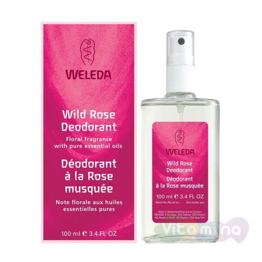 Веледа Розовый дезодорант (Weleda Wildrose Deodorant)