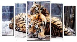 Юные тигрята (размер М)