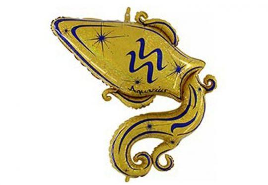 Знак Зодиака Водолей фольгированный шар с гелием