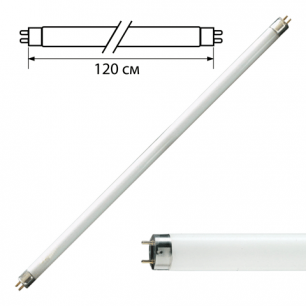 Лампа люминесцентная PHILIPS TL-D 36W/54-765,36Вт, цокольG13,в виде трубки120см, хол.днев.свет, 815849