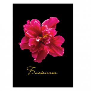 Блокнот STAFF А6 110*147мм, 80л., твердая ламинир. обложка, клетка, Красный цветок на черном, 127212