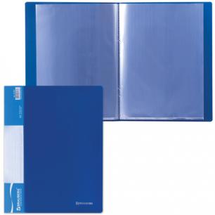 Папка 10 вклад. BRAUBERG Стандарт, синяя, 0,5мм, 221591