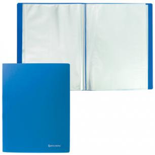 Папка  10 вклад. BRAUBERG Бюджет, синяя, 0,5мм, 222625