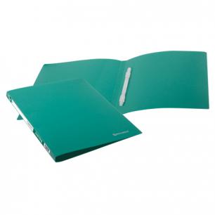 Папка с пластиковым скоросш. BRAUBERG Бюджет, зеленая, до 100 листов, 0,5мм, 222642