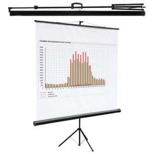Экран проекционный DIGIS KONTUR-C, матовый, на треноге, 200х200см, 1:1, DSKC-1103