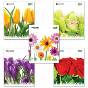 Тетрадь 48л. BRAUBERG кл., обл. мел. карт., Full Blossom (Цветы)  (5 видов), 401808