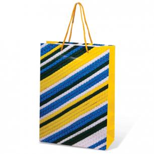 Пакет подарочный ламинированный, 22х31х9 см, геометрия ассорти, шк7462