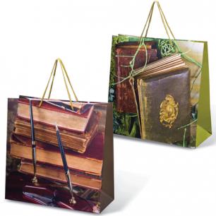 Пакет подарочный ламинированный, 38х38х16 см, книги, шк7523