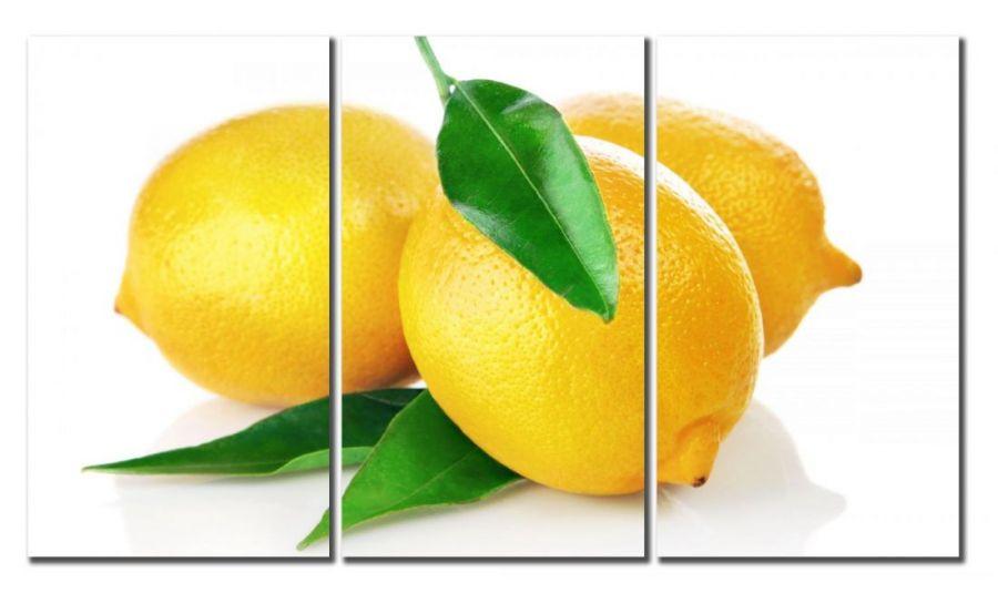 Модульная картина Лимоны
