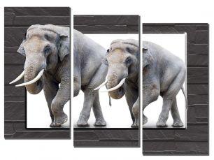 Два слона 3D