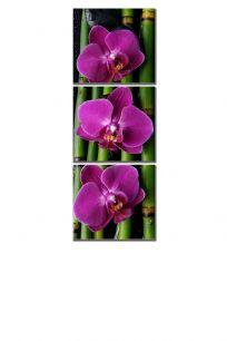 Орхидея и бамбук