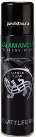"SALAMANDER PROFESSIONAL Аэрозоль ""Leather Fresh""  д/гл.кожи черный/009/"