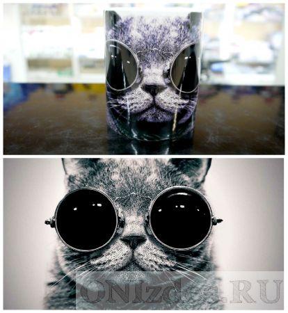 Кружка Кот в очках