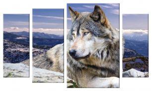 Степной волк