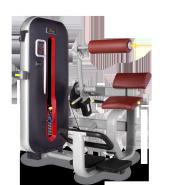 Разгибание спины Bronze Gym MT-009