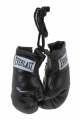 Брелок Mini Boxing Glove in Pairs Everlast 800000