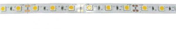 Светодиодная лента Ecola 12В  теплый белый 4,8w/m IP65