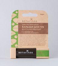 Восстанавливающий бальзам для губ масло ши и черная смородина с ароматом мяты и чабреца, 4 г