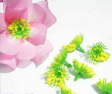Серединка цветка сливы