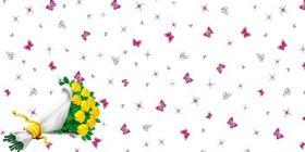 Пленка цветочная ПП прозрачная с печатью 0,7*10 м БАТТЕРФЛЯЙ РОЗОВЫЙ /10/