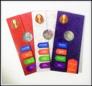 3 Буклета для монет 25 рублей чемпионата по футболу 2018 в России.
