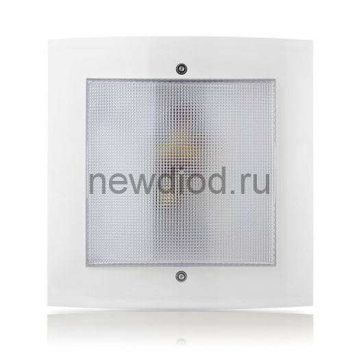 """Домовой LED-светильник с дежурным режимом """"Интеллект-ЖКХ""""  9Вт белый"""