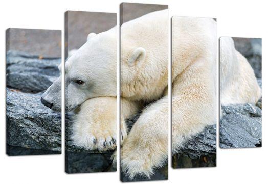 Модульная картина Грусть белого медведя