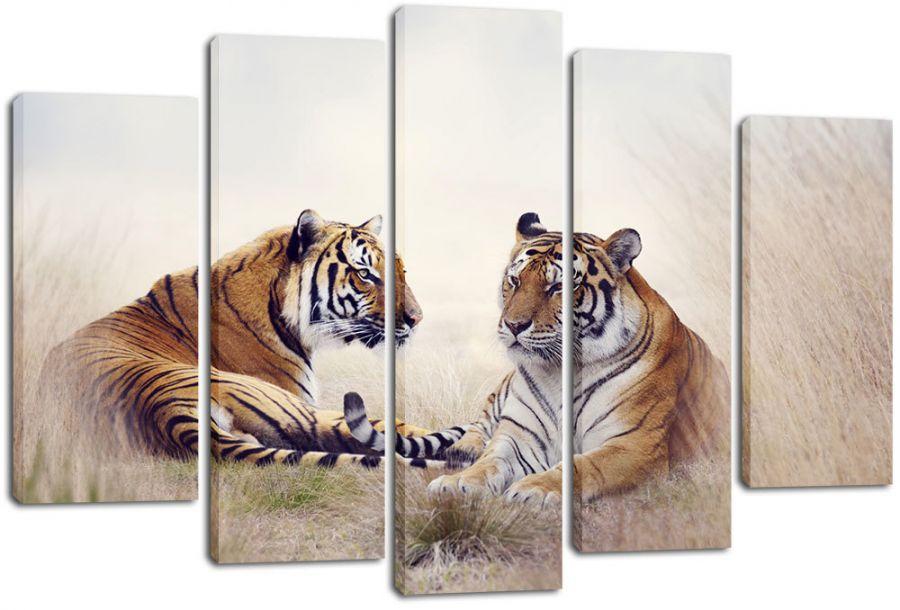 Модульная картина Два тигра