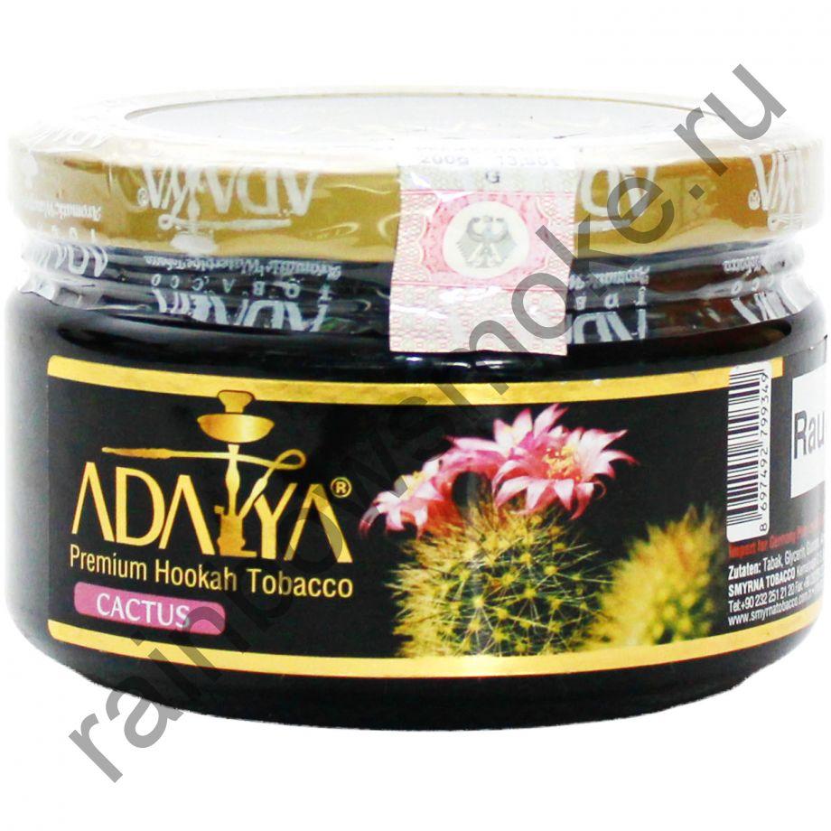 Adalya 250 гр - Cactus (Кактус)