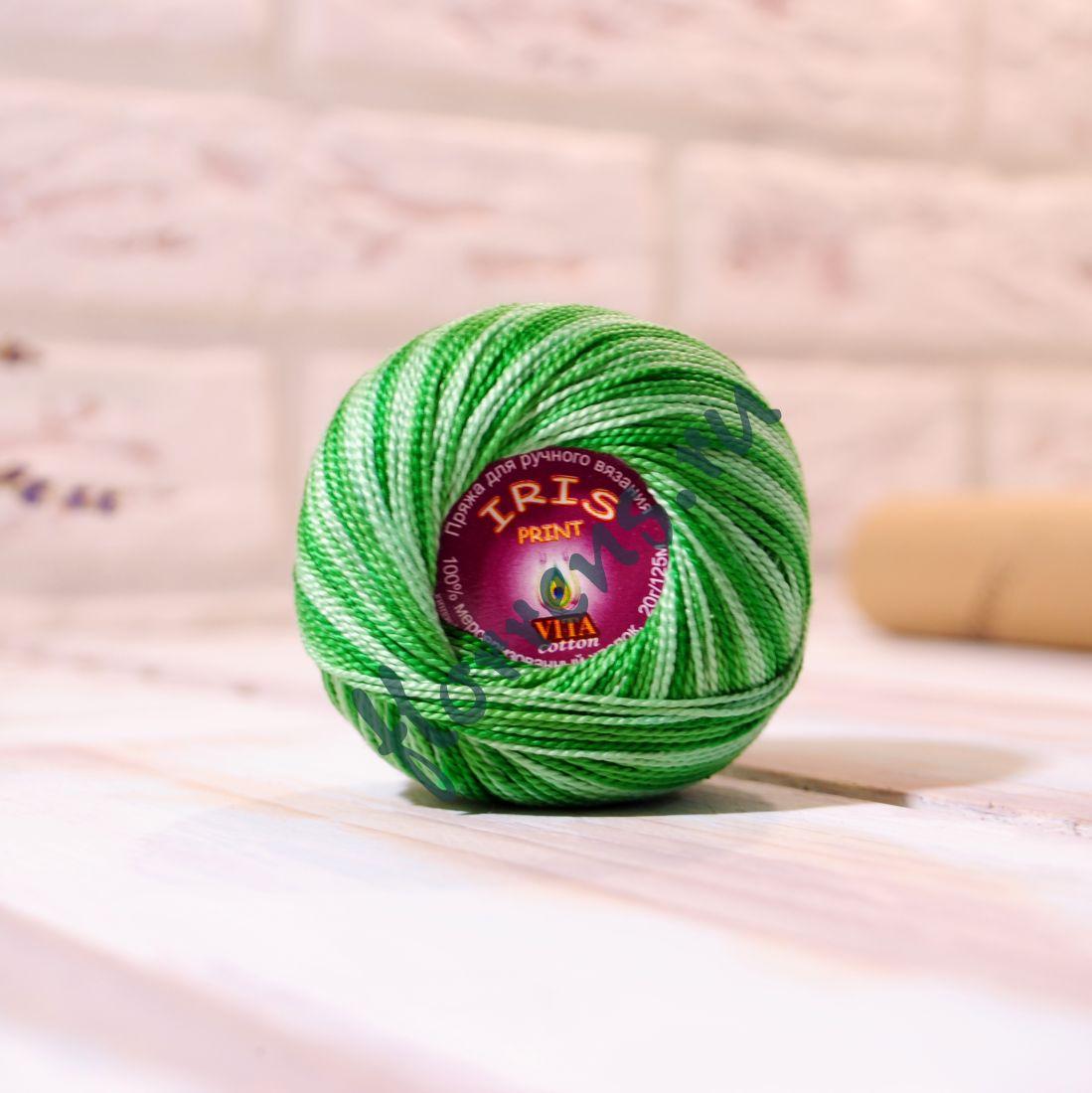 Пряжа Iris print / 2202 зеленый меланж