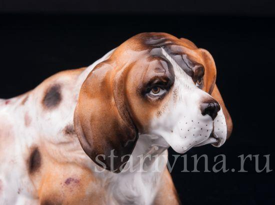 Фарфоровая статуэтка Охотничья собака производства Ernst Bohne Sohne, Германия