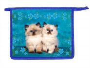 Папка д/тетр. А4 314029 Два котенка на голубом /50/ 31Ш4       09274