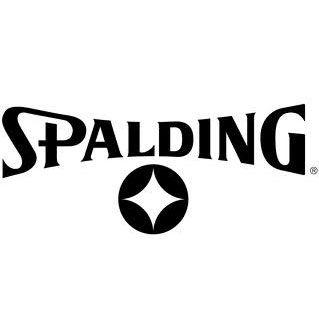 Баскетбольные мячи Spalding