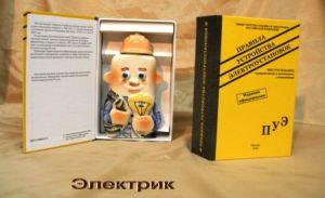 """Книга- штоф  """"Правила устройства электроустановок"""""""