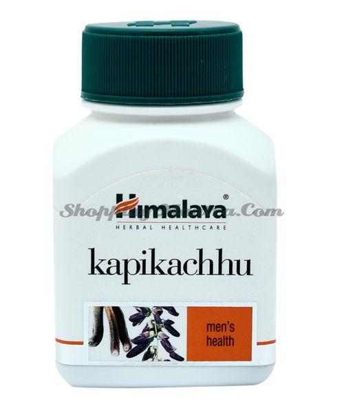 Капикачу бады Хималая / Himalaya Kapikachu