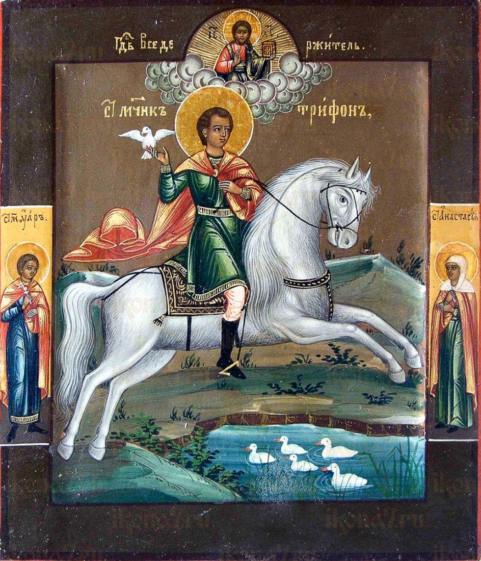 Трифон Апамейский (копия иконы 19 века)