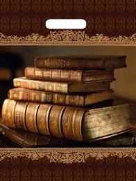"""Пакет с  прор. ручкой 31*40 см """"Книги"""" ламинир.  60 мкм 50 шт."""