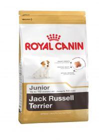 Джек-рассел-терьер паппи  0.5 кг