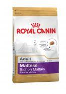 Мальтийская болонка эдалт 1.5 кг