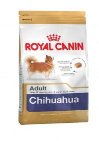 Чихуахуа эдалт 0.5 кг