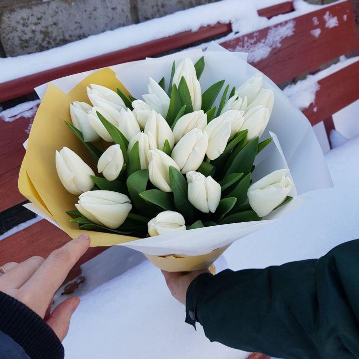 букет 25 белых тюльпан
