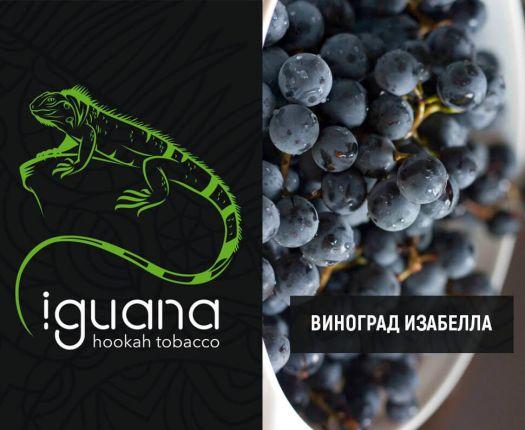 Табак для кальяна Iguana Виноград Изабелла
