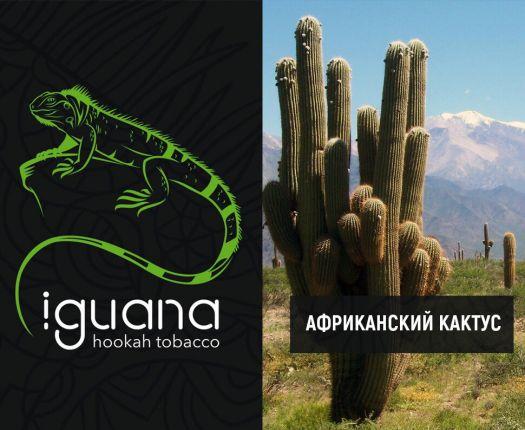 Табак для кальяна Iguana Африканский кактус